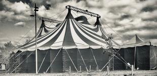 Nuit sans cirque